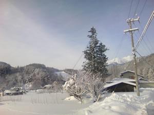 20080210-5.jpg