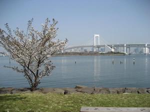 odaiba-20070401-3.jpg
