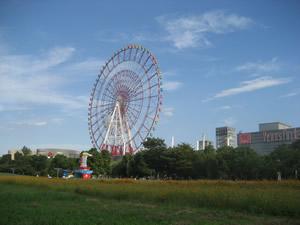 odaiba_hana1.jpg