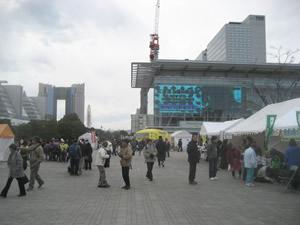 tm2008_4.jpg