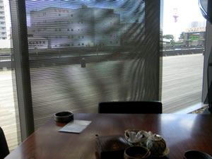 toyosu_kina2.jpg