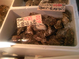 tukiji_iwagaki1.jpg